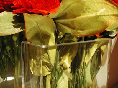 flowers060701c.JPG