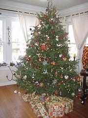 bigchristmastree